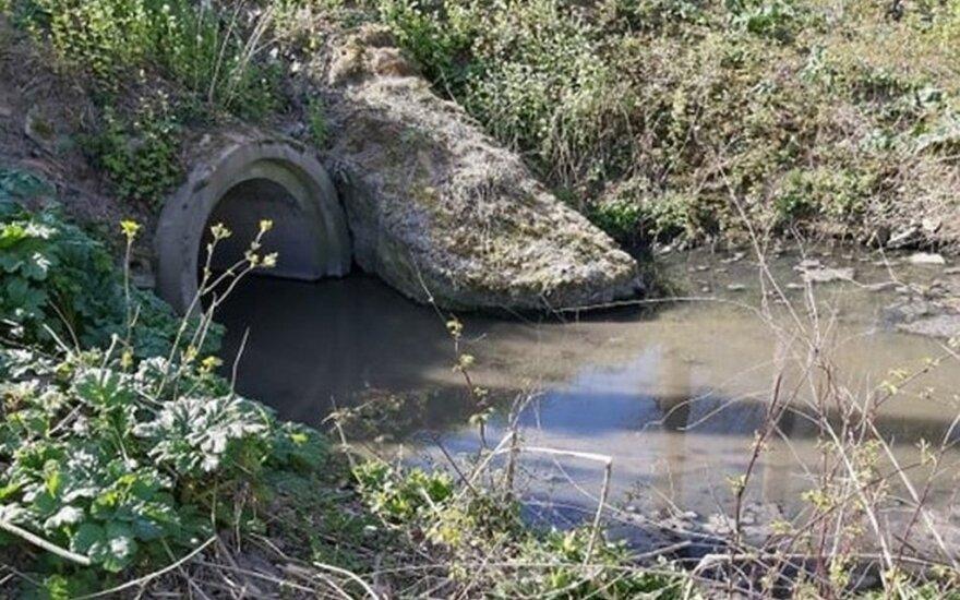 В Каунасе подозревают загрязнение Нерис фекалиями