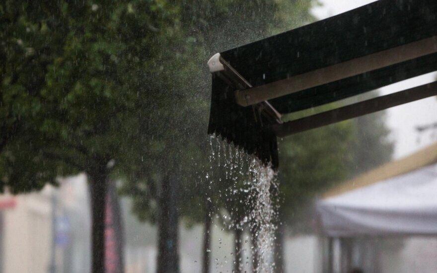 Прогноз: неделя начнется с дождей