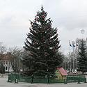 Kalėdų eglutė Jonavoje