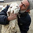 Irakietis bučiuoja savo avį