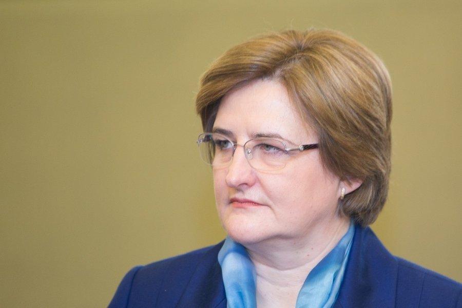 Спикер Сейма Литвы скептически оценивает предложение снизить НДС для производителей мяса и овощей