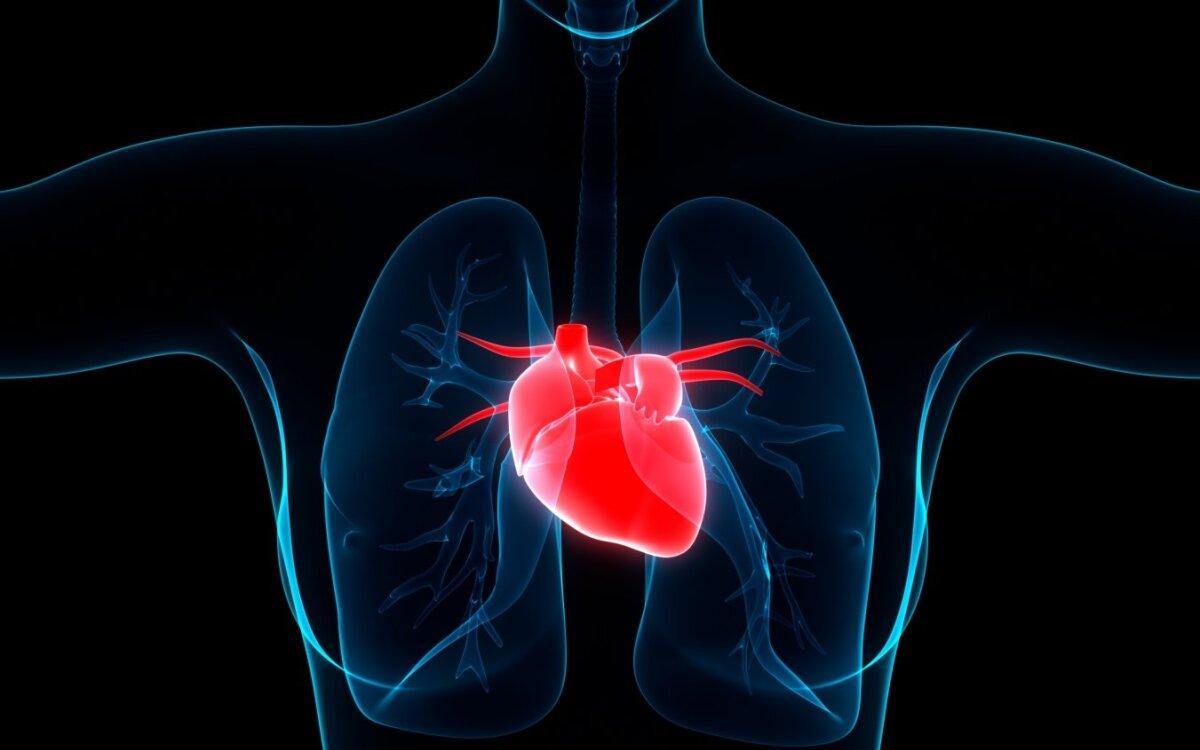 kaip įveikiau hipertenzijos vaizdo įrašą muzika hipertenzijai gydyti klausyk