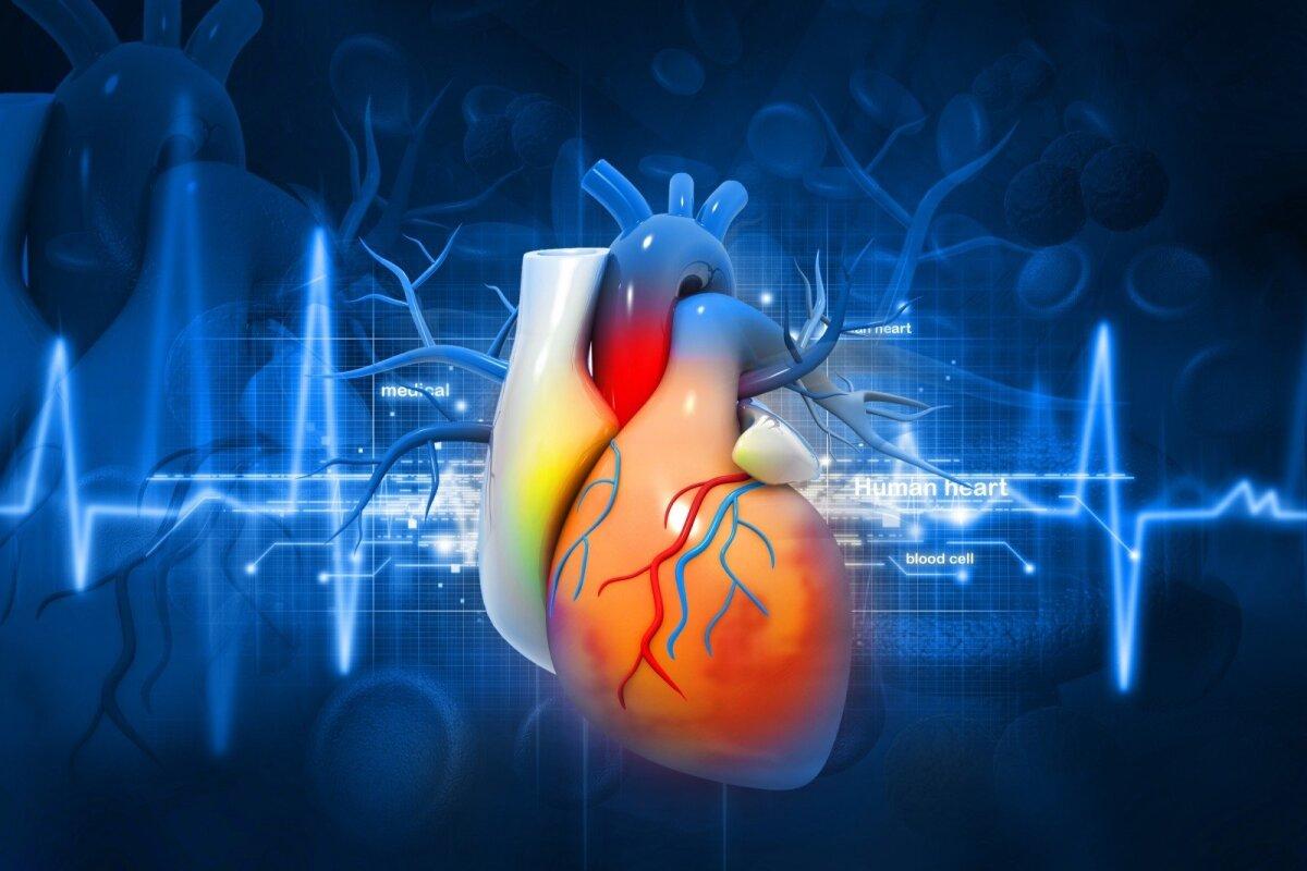 viršūnė sveikatos stazinė širdis