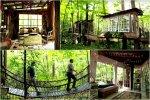 Medžio namelis Atlantoje