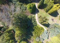Miškų teritorijose – neatrasti gamtos lobiai
