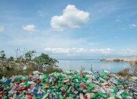 Nugaišusio banginio skrandyje rasta 115 plastikinių puodelių