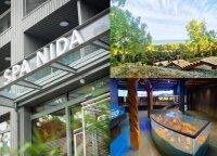 Nida ruošiasi išskirtinei vasarai ir vilios naujienomis: atvers naują SPA viešbutį, restoraną, muziejų