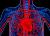 Norite išvengti lėtinių ligų – šiais gydytojos patarimais turėtumėte vadovautis kasdien