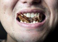 Du milijardai žmonių pasaulyje mėgaujasi vabzdžiais: restoranas Bankoke gurmanišką valgymą iškelia į naują lygį