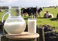 Skvernelis su Palioniu aptars situaciją pieno sektoriuje