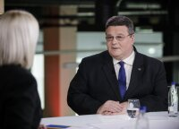 """If citizenship referendum fails, """"plan B"""" is to prepare for new one, Lithuania's formin says"""