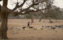 In Mali