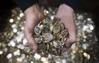 Britanijoje į apyvartą išleidžiama nauja svaro moneta