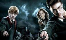 Harry Poterio filmų maratonas