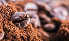 13 idėjų, kaip panaudoti kavos tirščius, kurių dar nežinojote