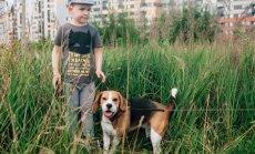 Berniuko savijautą pagerina šuo