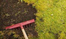 Plėvelės nuo piktžolių: kaip pasirinkti ir neapsigauti