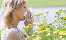 Kaip palengvinti šienligės simptomus? Gydytojos patarimai