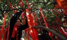 Švenčiami kinų Naujieji metai