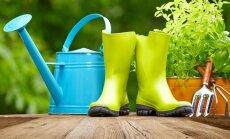 """<span style=""""color: #ff4040;"""">KONKURSAS:</span> sodo, daržo ir gėlyno auginimo gudrybės"""