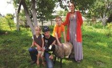 Balčiūnų šeima