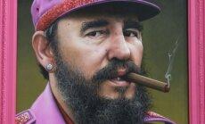Rožinis Fidelis Castro. Meno kūrinys.