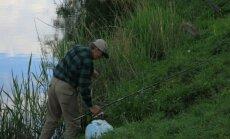 Siekiant apsaugoti vertingas žuvis nebus leidžiama jų sugauti