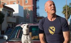 Bruce Willis filme Kartą Venecijoj