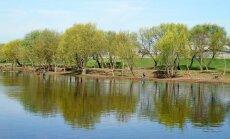 Upiu santaka Kaune