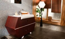 Idėjos ieškantiems spintelės vonioje