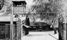 Aušvico koncentracijos stovykla