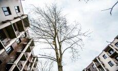 NT pardavėjo patirtis: matė, kaip butas per metus pabrango 5 tūkst. eurų