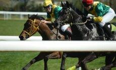 Žirgų lenktynės / Foto: Živilė Kazlauskienė