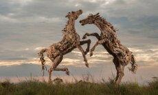 Jameso Dorano-Webbo skulptūra