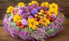 Patarimai: kad skintos rudeninės gėlės džiugintų kuo ilgiau