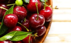 Vyšninis amaras – kaip jį išnaikinti natūraliomis priemonėmis