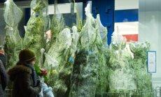 Prekyba Kalėdų eglutėmis