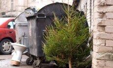 Žmonės eglutes dažnai aplieka tiesiog prie konteinerių