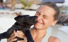 Kaip teisingai kelti šunis?