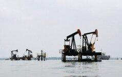 Brangstant naftai, akcijų biržose daugėja optimizmo
