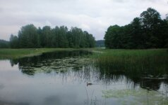Trąšų poveikis vandens telkiniams: ežerų Lietuvoje tik mažės