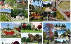 Išrink gražiausiai sutvarkytą daugiabučių ir miestelių aplinką