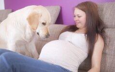 Kokių gyvenimo malonumų turi atsisakyti nėščioji? Atsako gydytoja