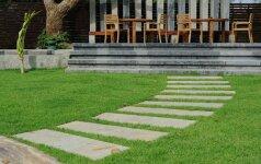 Takai sode: aštuonių skirtingų medžiagų panaudojimo būdai