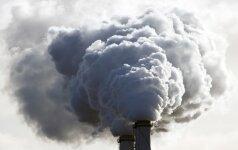 Oro tarša miestuose: paprasti būdai, padėsiantys saugoti sveikatą