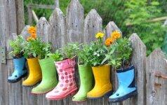 GALERIJA: neįtikėtinos idėjos, kaip dekoruoti tvorą sode