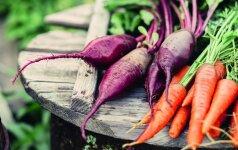 Pirmasis derlius – kaip juo rūpintis ir išlaikyti