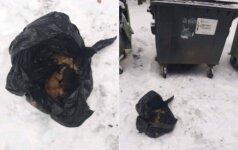 Neįtikėtinas žiaurumas Alytuje: šiukšlių konteineryje paliko sušalti 10 šuniukų