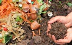 Naudingi patarimai pradedantiems kompostuoti