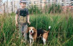 Autistas berniukas neatpažįstamai pasikeitė, kai namuose pasirodė šuo